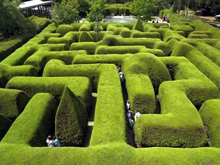 Labirinto Ashcombe