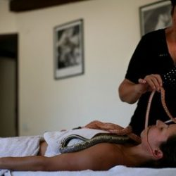 Massagens com cobras 5