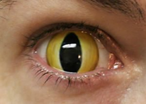a96806_a503_snake-eye 1