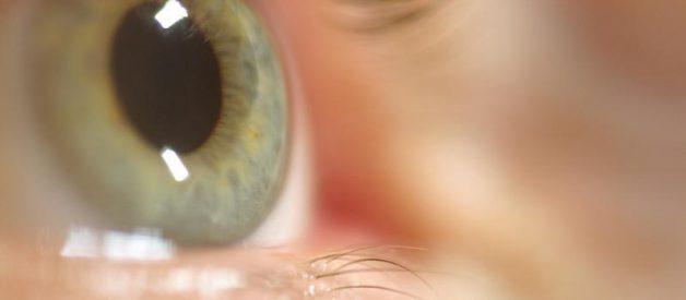 Sabia que suas acções podem ser previstas pelo movimento de suas pupilas?