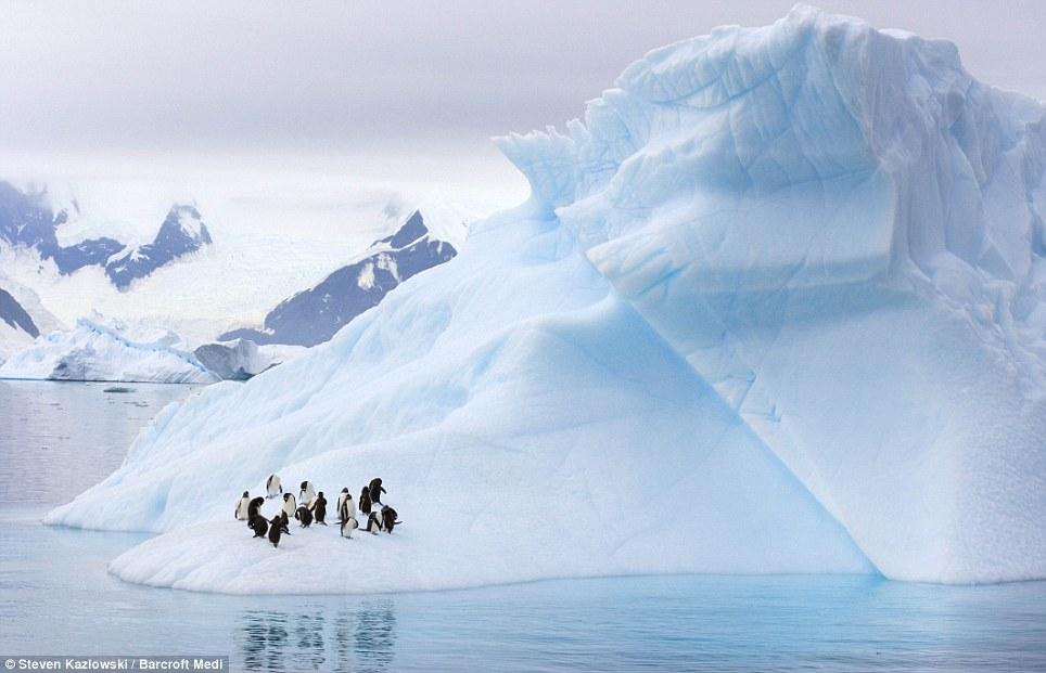 Esculturas de gelo 3