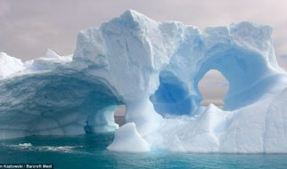 Esculturas de gelo 20