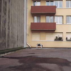 Fotos incriveis de pessoas a levitar 15