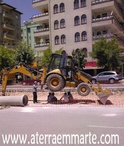 Trabalhar à sombra da bananeira??! 1