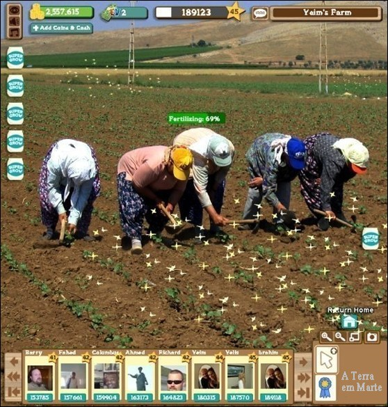 Farmville na vida real 1