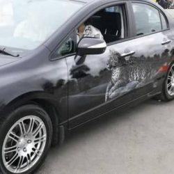 Graffitis e arte em carros 44
