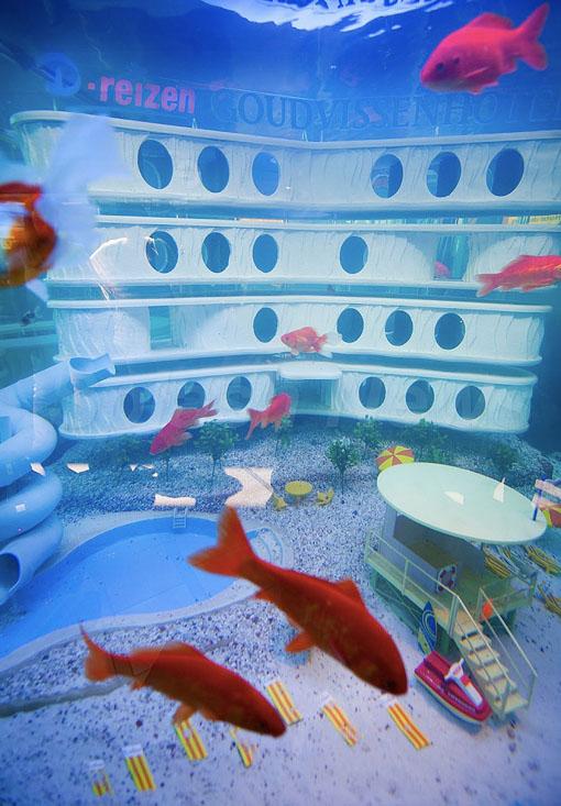 Primeiro hotel para peixes do mundo 1