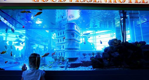 Primeiro hotel para peixes do mundo 138