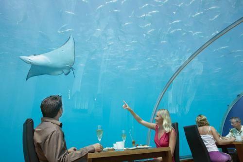 Ithaa, um restaurante debaixo de água 3