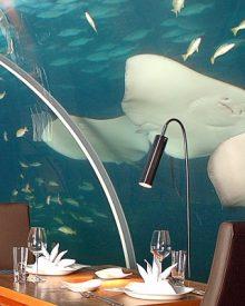 Ithaa, um restaurante debaixo de água