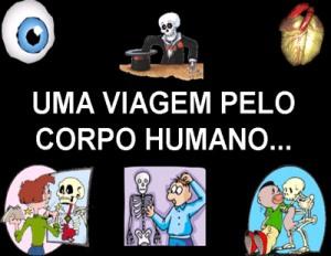 Coisas interessantes sobre o corpo humano