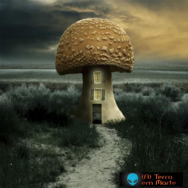 Imagens surrealistas 1