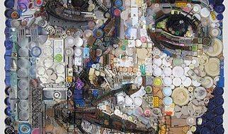 Retratos de lixo por Freeman Zac 11