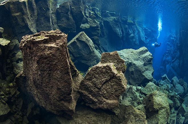 As melhores fotos subaquáticas de 2010 6
