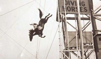 Os cavalos mergulhadores de Atlantic City 2