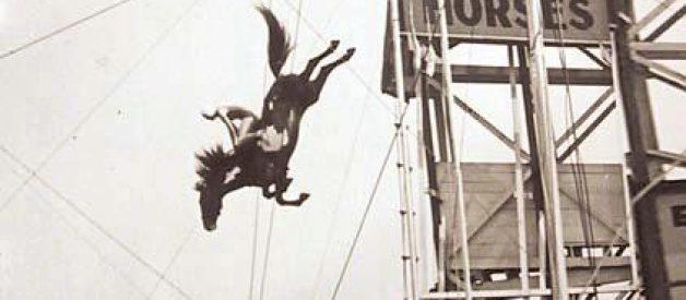 Os cavalos mergulhadores de Atlantic City