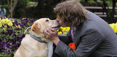 Australiano casou-se com a «melhor amiga»… a cadela
