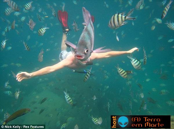 Que peixe é este? 1