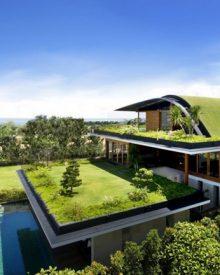 Uma casa com jardim no telhado