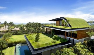 Uma casa com jardim no telhado 3