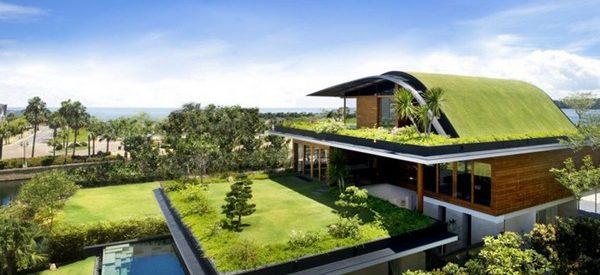Uma casa com jardim no telhado 30