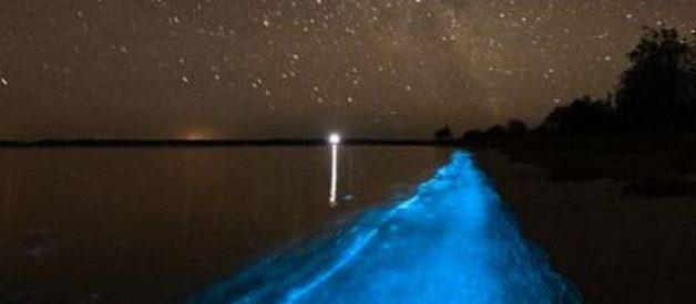 Aguas luminosas