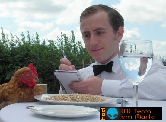 The Chicken Hotel: Um hotel para galinhas 1