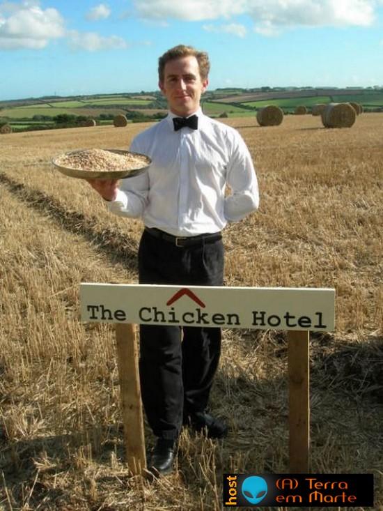 The Chicken Hotel: Um hotel para galinhas 3