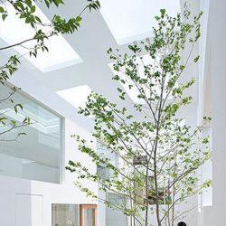 House N por Sou Fujimoto - Arquitectura maravilhosa 21