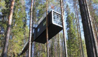 Um hotel nas árvores 3