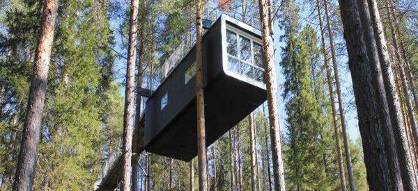 Um hotel nas árvores