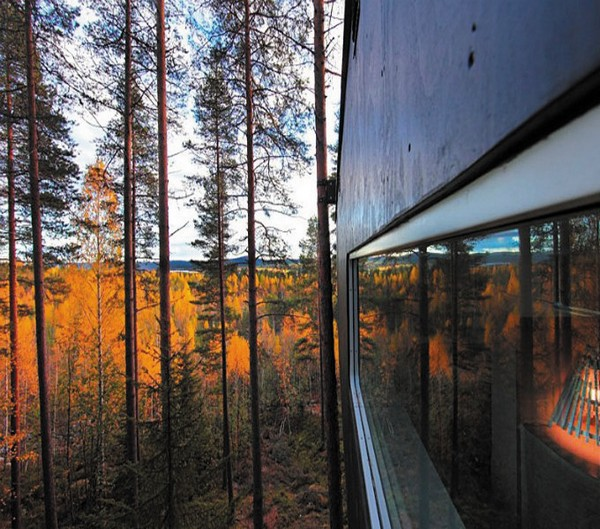 Um hotel nas árvores 6