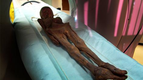 mumias egipcias