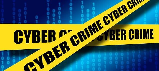 ciber crimes