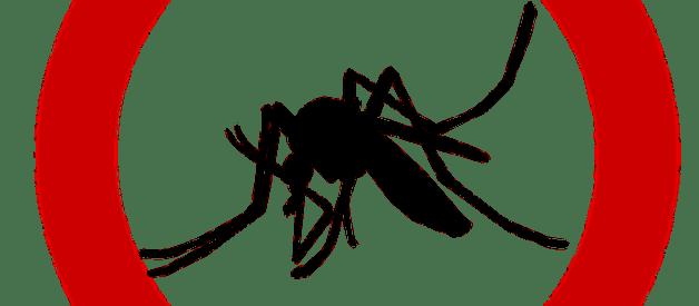 como espantar mosquitos