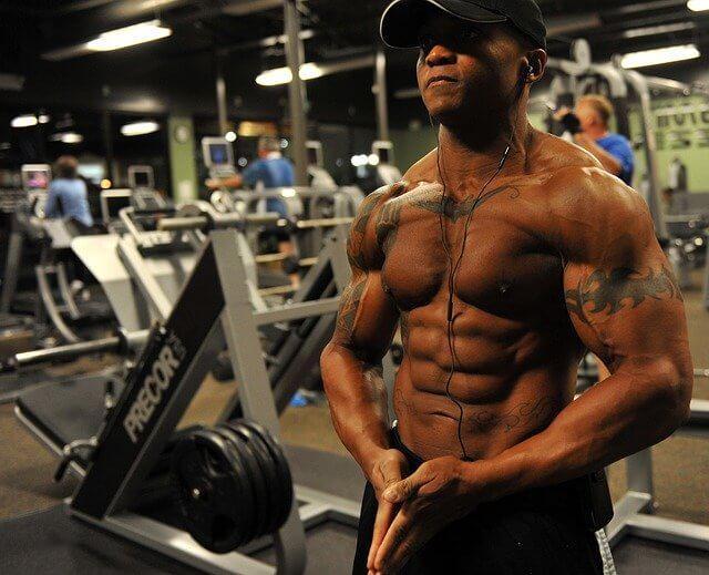 Músculos Humanos